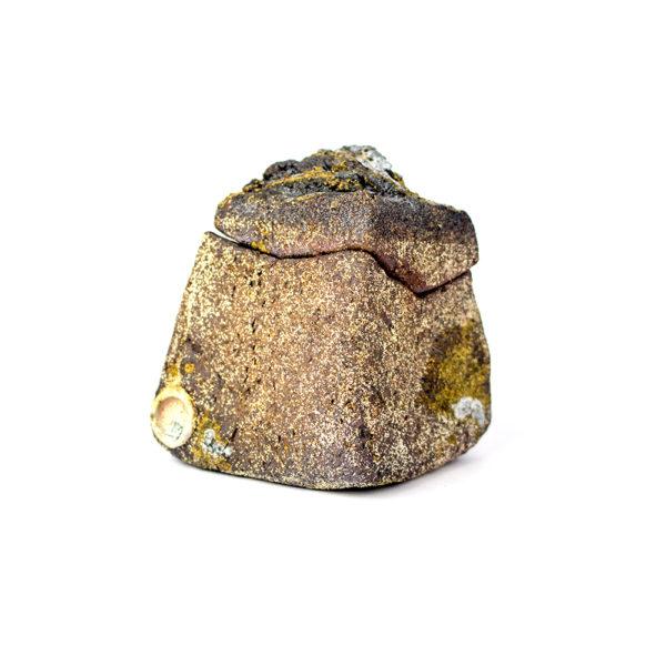 Large Lidded Rock
