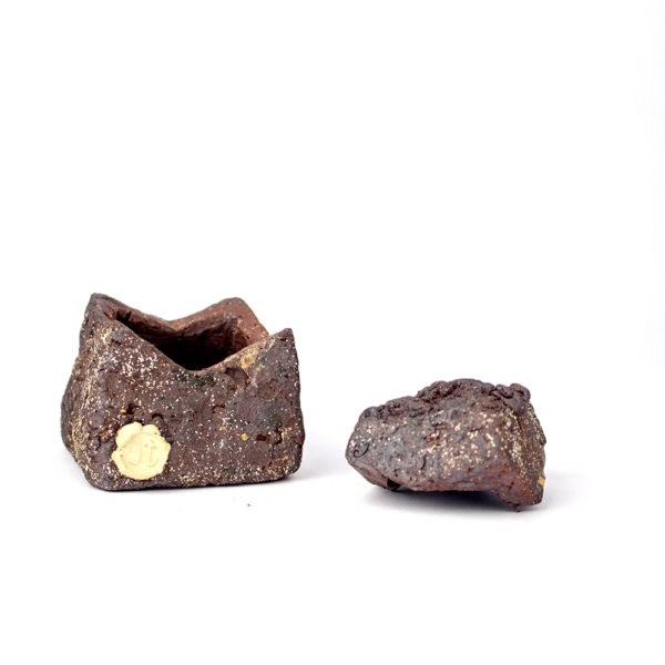 medium lidded rock