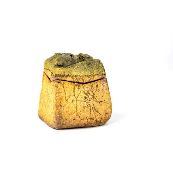 medium lidded rock