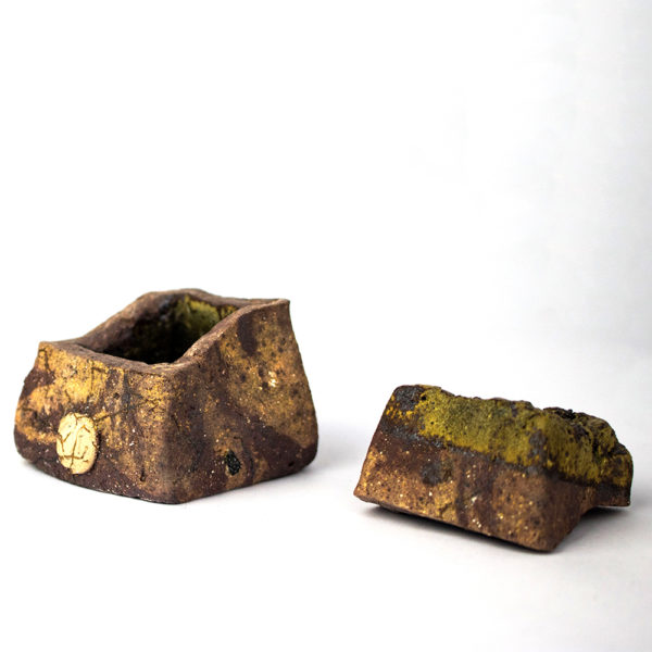 small lidded rock